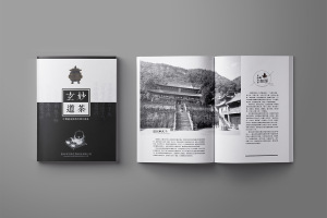 玄妙道茶-中国风水墨画册设计