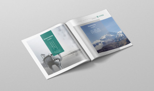 中羊牧业画册-商务画册